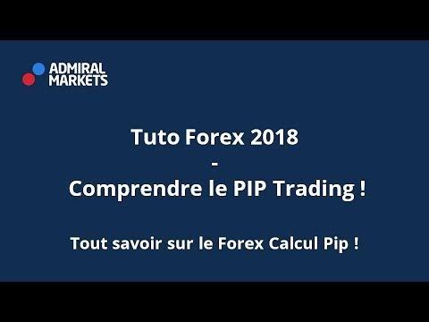 Forex Valeur Dun Pip | Forex Easy Money Reddit