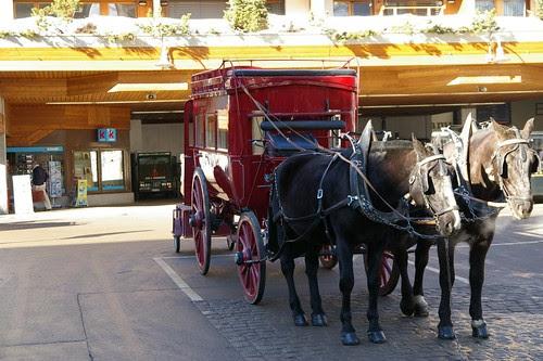Zermatt的馬車