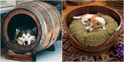-e-casa-cama para animais de estimação-made-com-barris-Evolution-Green