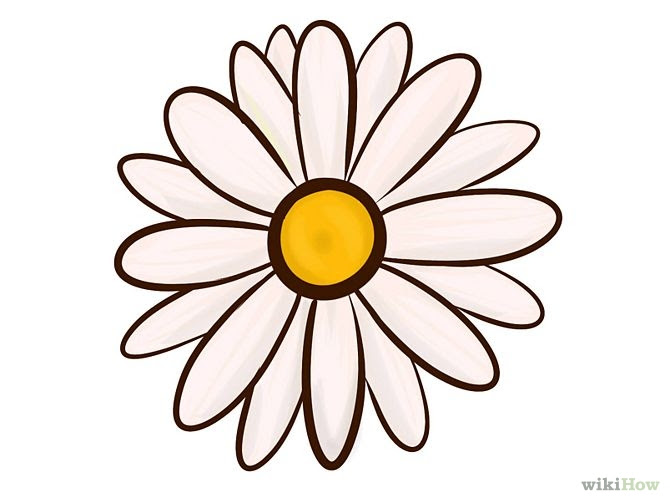 Free Drawing Of Flowers Download Free Clip Art Free Clip Art On Clipart Library