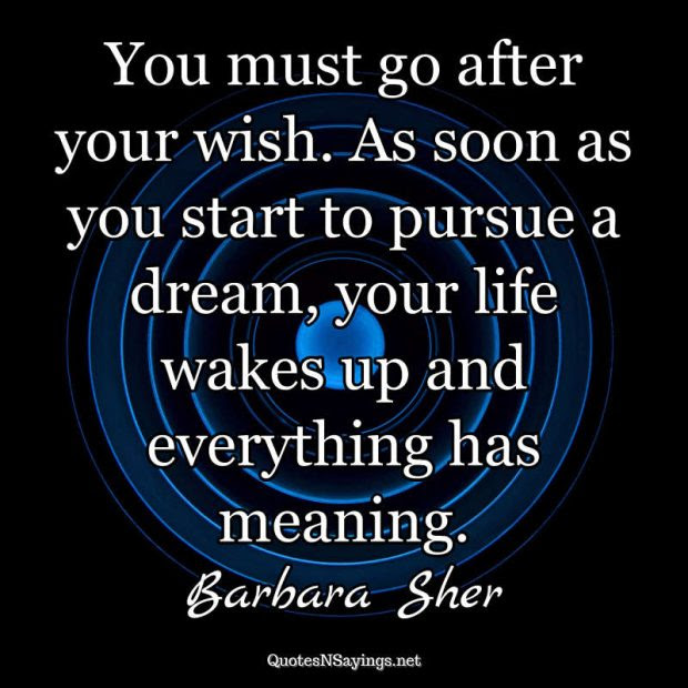 You Must Go After Your Wish As Soon As You Start Barbara Sher
