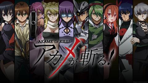 Anime Like Akame Ga Kill
