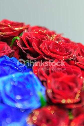 Brillantes Rosas Rojas Y Azules Con Lame Foto De Stock Thinkstock