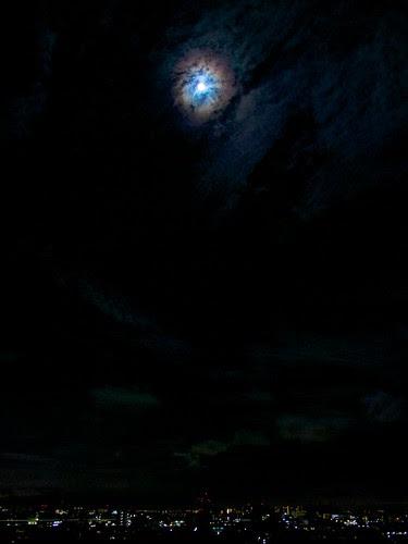 蒼い月の夜