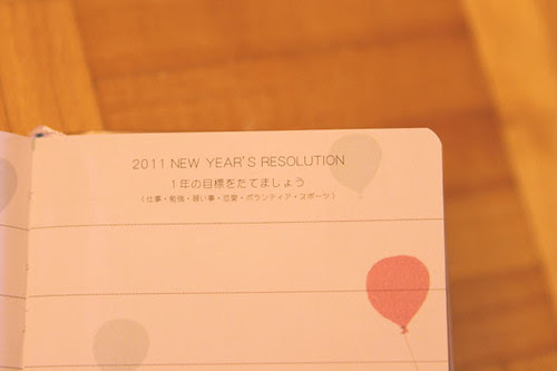 have you planned your 2011 resolution already?
