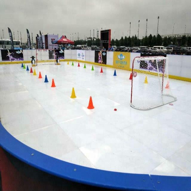 Backyard Ice Rink Tarps Sale