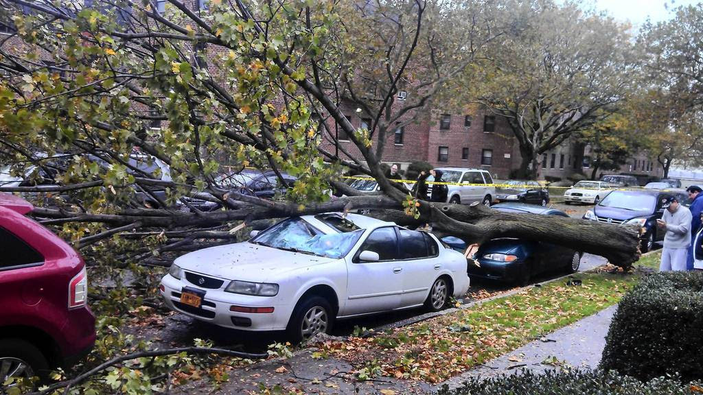 Damaged cars sit under a fallen tree from high winds in the Queens borough of New York. Hurricane Sandy began battering the U.S. East Coast on Monday with fierce winds and driving rain, as the monster storm shut down transportation, shuttered businesses and sent thousands scrambling for higher ground hours before the worst was due to strike.