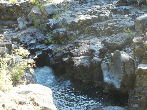 Natural Bridge, The Rogue River, Oregon _ 6490