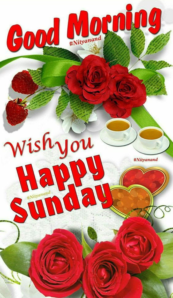Wish You Happy Sunday Good Morning Pictures Photos And Images For