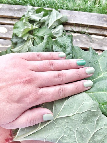 rhubarb leaf green nails