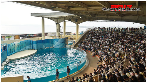 新江之島水族館32.jpg