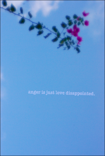 Quotes About Anger And Disappointment 51 Quotes