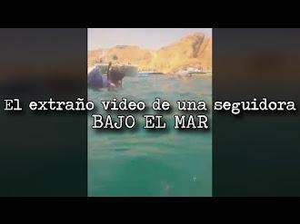 El extraño video de una seguidora bajo el mar
