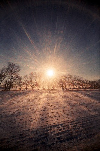 a solar blast warms my winter chills