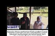 KADIS Pertanian Kabupaten Garut Kunjungi Kelompok Tani Panggalih-Cisewu