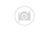 Pictures of Classic Ford Trucks For Sale