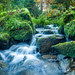Silberbachtal # 13 - Bach zwischen moosigen Felsen,  Wasserfall, Herbst - Creek between mossy rocks, waterfall, autumn