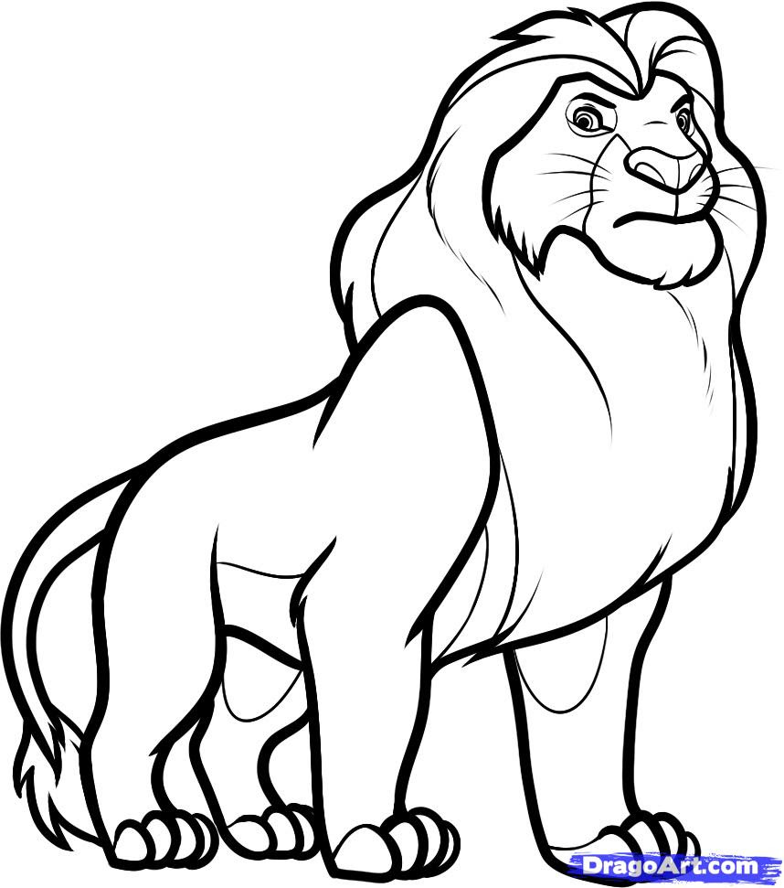 Drawing Skill Lion King Outline Drawing Collection of lion king lion drawing download more than 30 images. drawing skill blogger