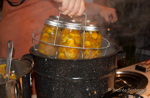 Making Bread & Butter Pickles 9A-1.jpg