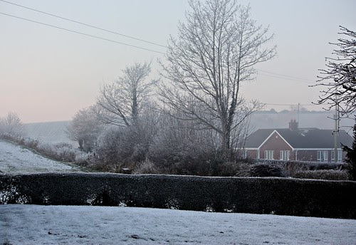 cold & frosty morning