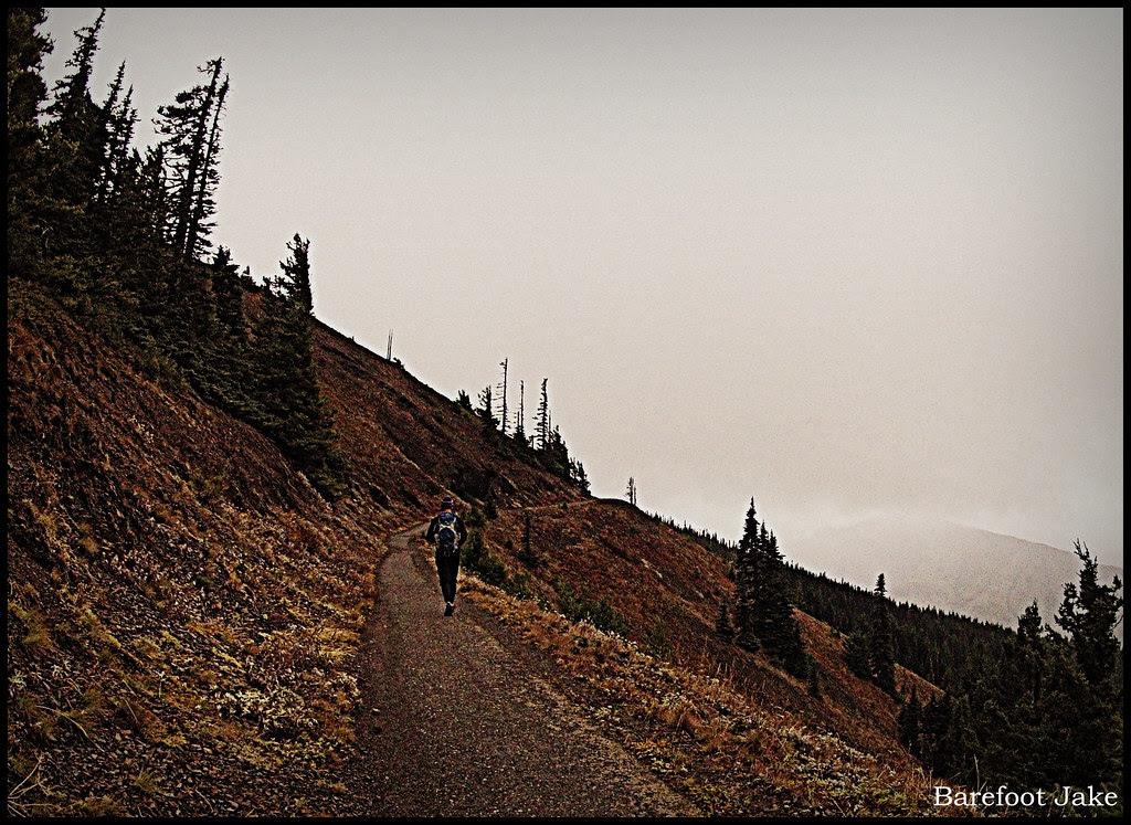 trail running hurricane hill