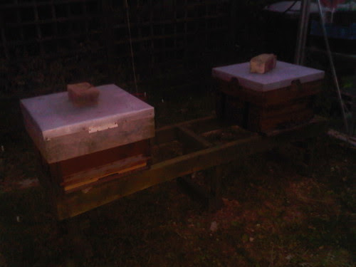 Beehives Jul 11