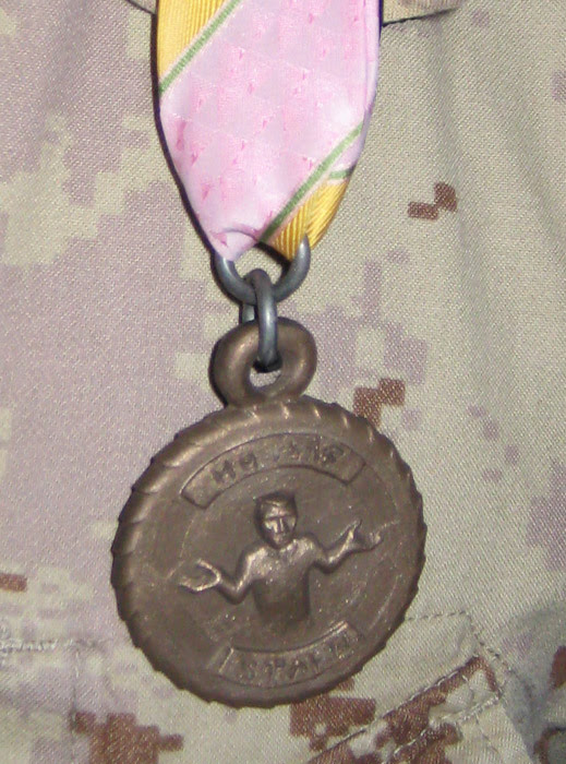 Staph Campaign Medal2