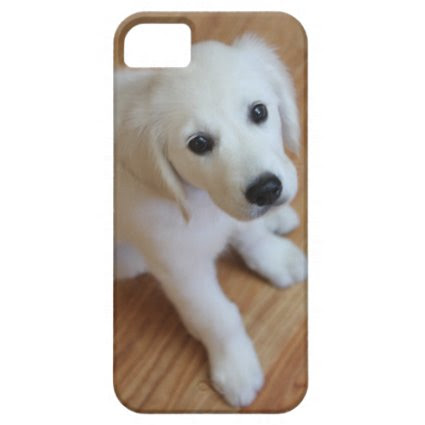 your favorite pet photo on an iphone4 case iPhone 5 cover