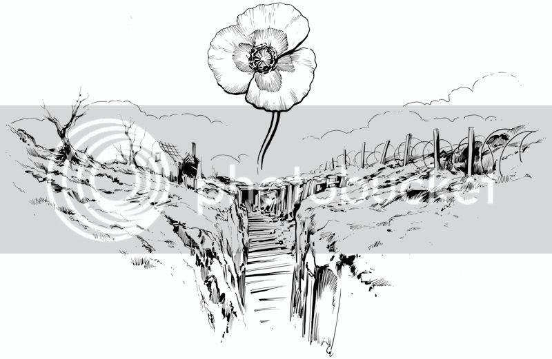 illustration,Graeme Neil Reid,poppy