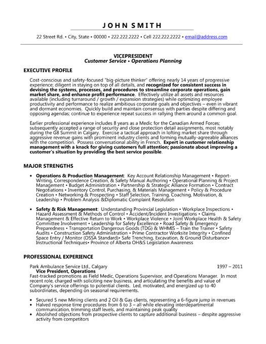 resume templates vice president