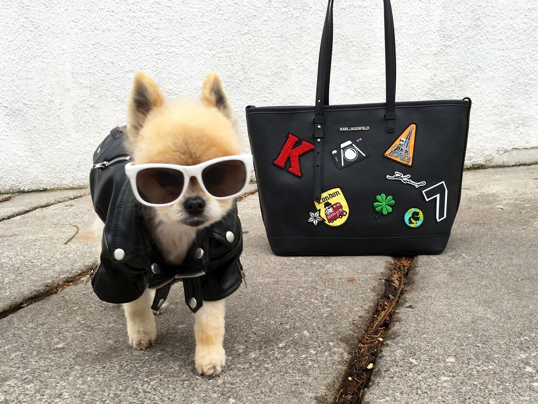 photo KarlLagerfeld-Beckerman-Giveaway-Patchwork Shopper-BeckermanBlog-1_zpsdovjyis0.jpg
