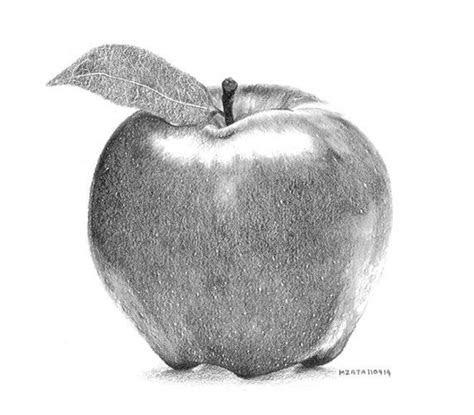 apple pencil drawings drawings art gallery