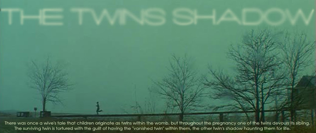 The Twin's Shadow