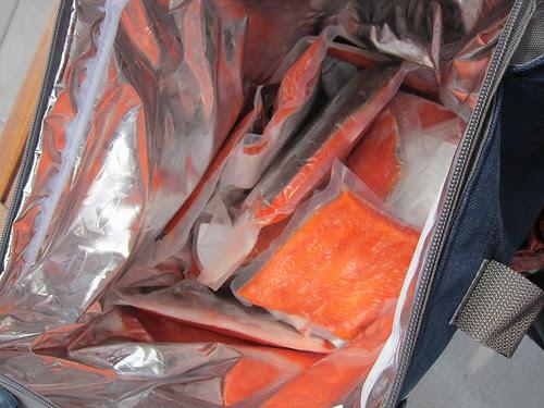 20 pounds of Alaskan Salmon