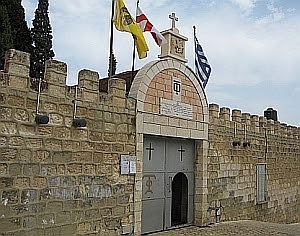 Image result for cana galileii