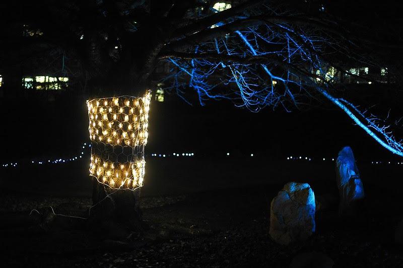 Evry Daily Photo - Ilumination - Cite Administrative - Jardin Japonais