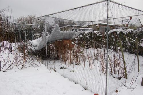 allotment snow Jan 13 10