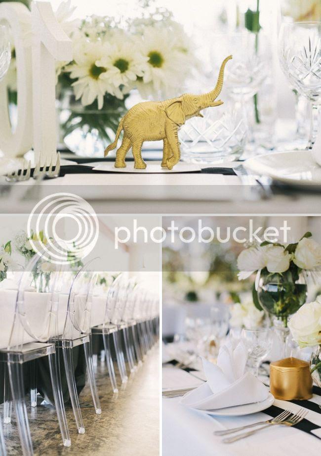 http://i892.photobucket.com/albums/ac125/lovemademedoit/welovepictures%20blog/BushWedding_Malelane_012.jpg?t=1355997600