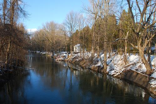 Sunshine along the creek