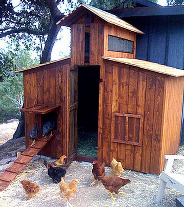 Coop Ret: Next Topic Cute Backyard Chicken Coops