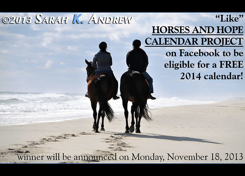 """""""like"""" the Horses and Hope Calendar Project page on Facebook for a chance to win a FREE 2014 calendar!"""