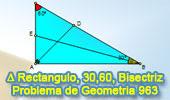 Problema de Geometría 963 (English ESL): Triangulo Rectángulo, Angulo, 30, 60 Grados, Bisectriz, Relaciones Métricas