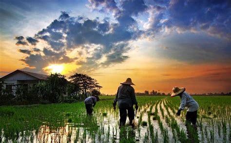 kebahagiaan   dirasakan oleh kamu  tinggal  desa