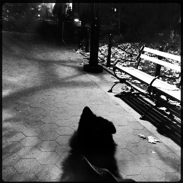 City Nocturne