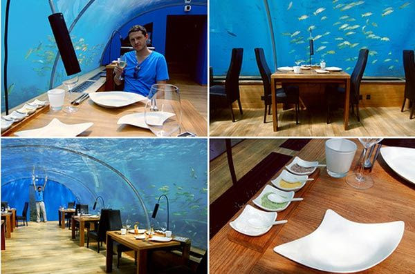under sea crazy restaurant44 World's First Ever Undersea Restaurant   Ithaa