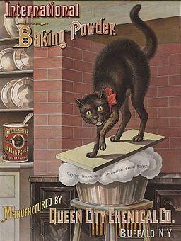 Baking powder advertisement 1885