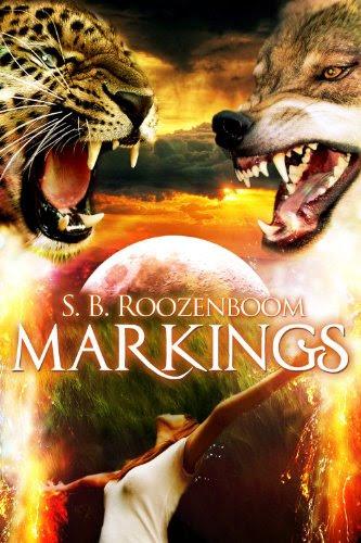 Markings by S.B. Roozenboom
