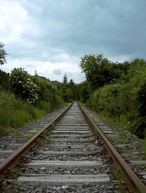 step-003