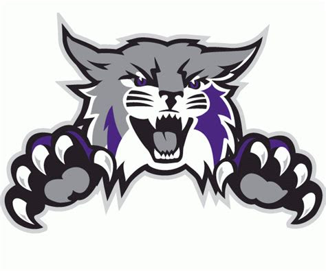 weber state wildcats alternate logo ncaa division