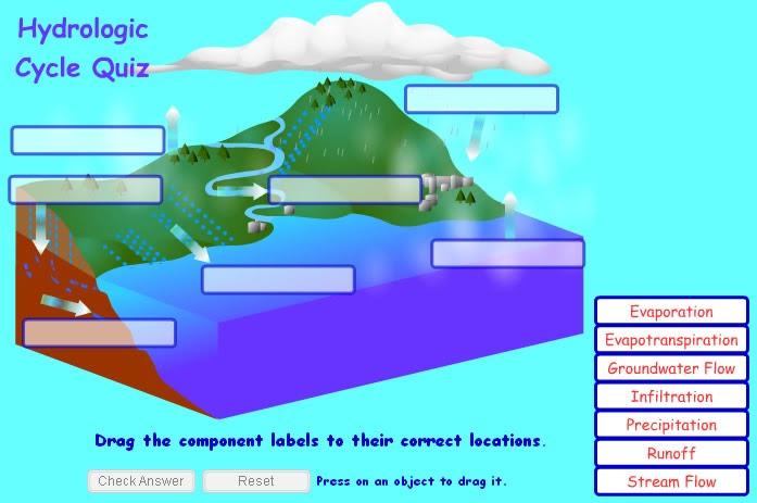 34 Label Water Cycle Diagram Answers